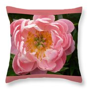 Coral 'n' Gold Throw Pillow
