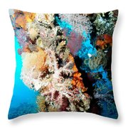 Coral Pillars Throw Pillow
