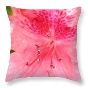 Coral Pink Azalea Goodness Throw Pillow