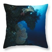 Coral Reef Wall With Seafan And Hard Throw Pillow