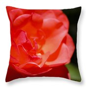 Coral Rose Focus Left Throw Pillow