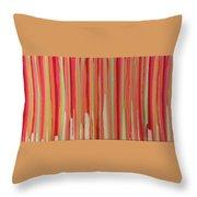 Coral Stripe  Throw Pillow