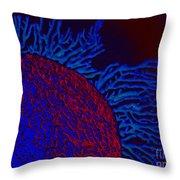 Coral Study Throw Pillow