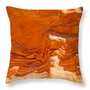 Coral Swirls Throw Pillow