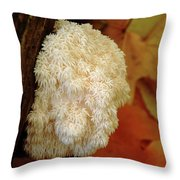 Coral Tooth Throw Pillow