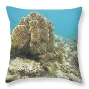 Coral Tree Throw Pillow