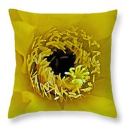 Core Of A Yellow Cactus Flower At Pilgrim Place In Claremont-california Throw Pillow