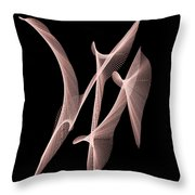 Choreography Of Feathers Throw Pillow