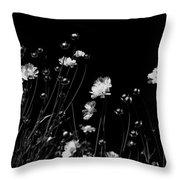 Coreopsis Throw Pillow