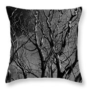 Corkscrew Throw Pillow