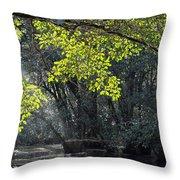 Corkscrew Swamp - In The Autumn Throw Pillow