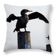 Cormorant And Seagull Throw Pillow