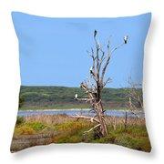 Cormorant Collective Throw Pillow
