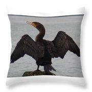 Cormorant In Bellingham Throw Pillow