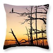 Cormorant Sunset Throw Pillow