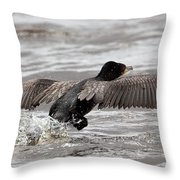 Cormorant Taking To The Air Throw Pillow