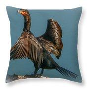 Cormorant Wings Throw Pillow