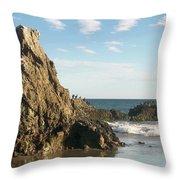 Cormorants At El Madador Beach Throw Pillow