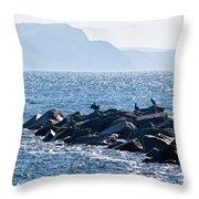 Cormorants At The Cobb - Lyme Regis Throw Pillow