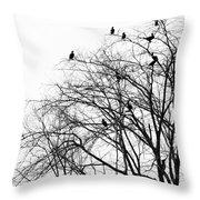 Cormorants Throw Pillow