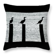 Cormorants Port Jefferson New York Throw Pillow