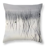 Cormorants Waiting For The Night Throw Pillow