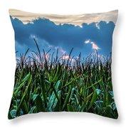 Corn And Clouds Panorama Throw Pillow
