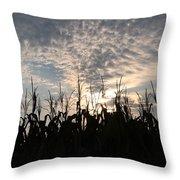 Corn At Sunrise Throw Pillow