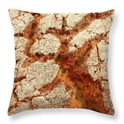 Corn Bread Crust Throw Pillow