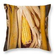 Corn Cobb On Stalk Throw Pillow