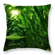 Corn Field Throw Pillow by Carlos Caetano