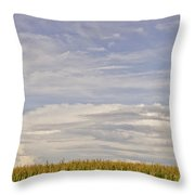 Corn Field In Sunset II Throw Pillow