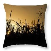 Corn Field Sunrise Throw Pillow