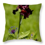 Corn Flower With A Friend Visiting Throw Pillow