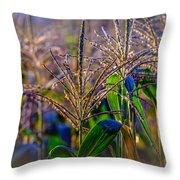 Corn Tassels Throw Pillow