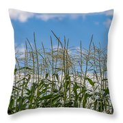 Corn Tassels In The Sky Throw Pillow