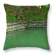 Corner Of The Lake Throw Pillow