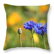 Cornflowers -1- Throw Pillow by Issabild -