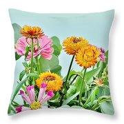 Cornflowers 20 Throw Pillow