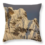 Cornices On The Rooster Comb Throw Pillow
