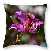 Coronado Island Throw Pillow