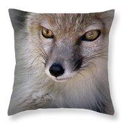 Corsac Fox- Vulpes Corsac 03 Throw Pillow