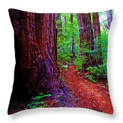 Cosmic Redwood Trail On Mt Tamalpais Throw Pillow