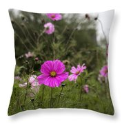 Cosmos Flower Throw Pillow