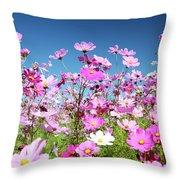 Cosmos Flowers Throw Pillow