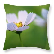 Cosmos In A Field Throw Pillow