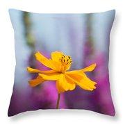 Cosmos Polidor Flower Throw Pillow