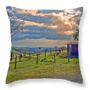 Costa Rica Cow Farm Throw Pillow