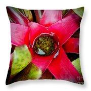 Costa Rica Flower Throw Pillow
