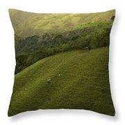 Costa Rica Pasture Throw Pillow